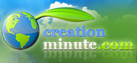 CreationMinute/CreationMinute.jpg